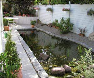 Gartenteich-Fischteich
