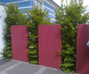 Mauerscheiben als Sichtschutz gestrichen