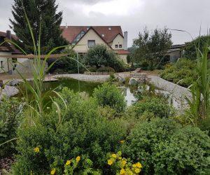Teich mit Sitzplatz Mauer und Sonnensegel